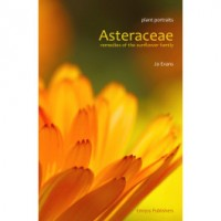 Asteraceae - Remedies of the Sunflower Family